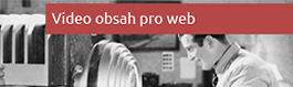 Videoobsah pro web